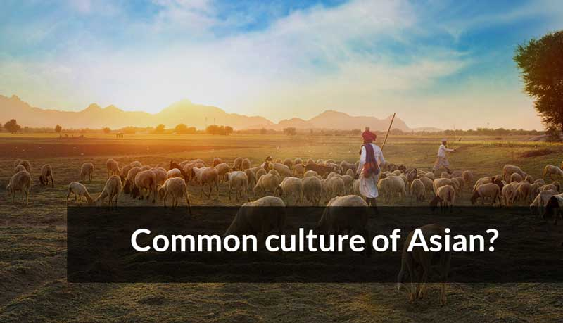The common culture of Asian?