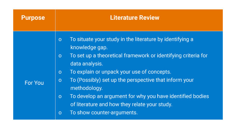 The-literature-review-does-for-you