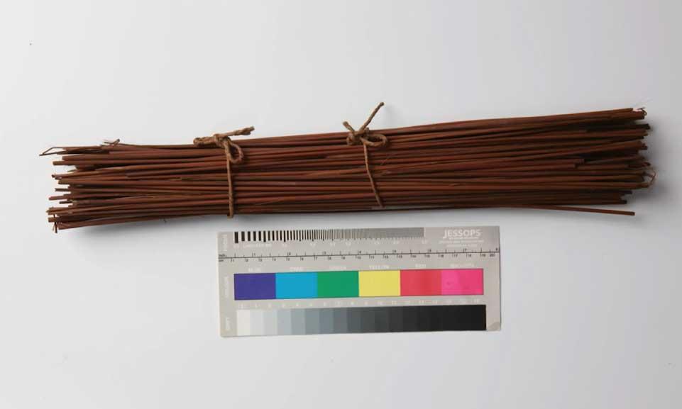 bundle-of-some-118-short-reeds