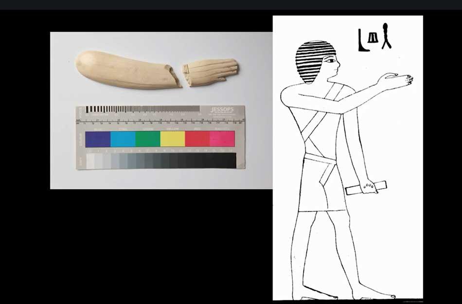 shape-of-human-hands